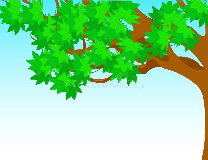 Árbol con las hojas del verde contra el cielo. stock de ilustración
