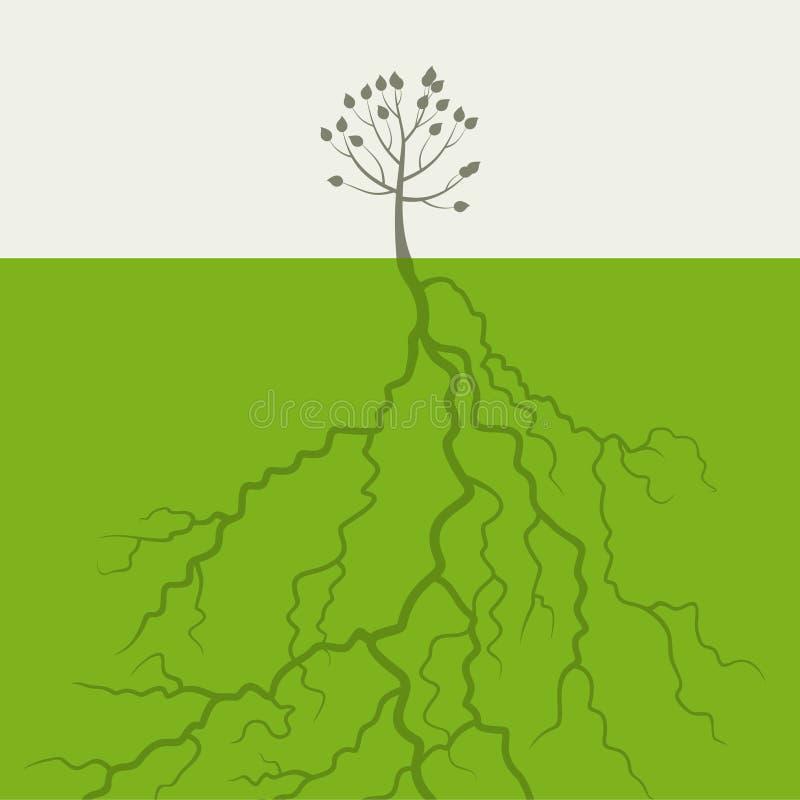 Árbol con una raíz stock de ilustración