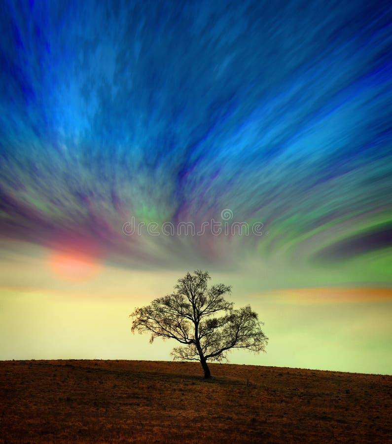 Árbol contra un cielo surrealista imagen de archivo
