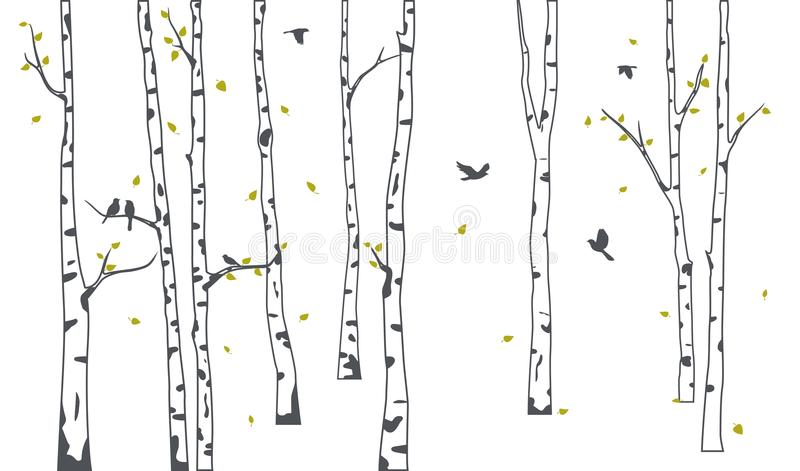 Árbol de abedul con la silueta verde de las hojas que cae y de los pájaros ilustración del vector