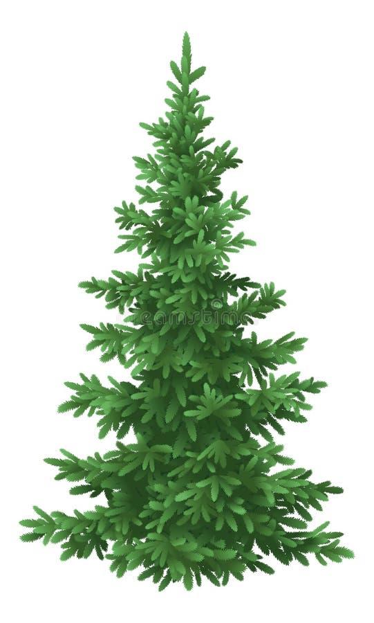Árbol de abeto de la Navidad, aislado ilustración del vector