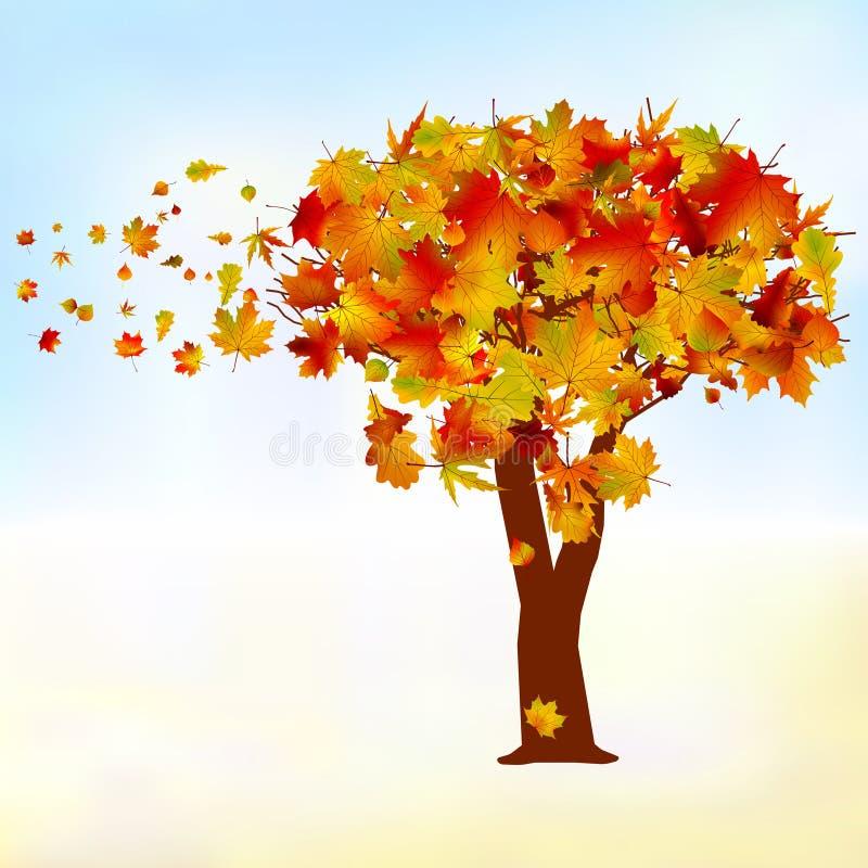 Árbol de arce, caída de la hoja del otoño. EPS 8 libre illustration