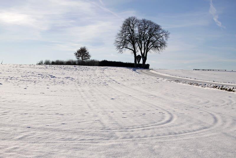 Árbol de castaña en invierno, Baja Sajonia, Alemania foto de archivo