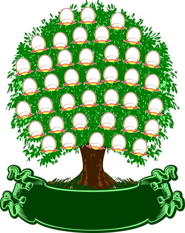 Árbol de familia del color. stock de ilustración