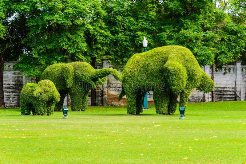Árbol de familia del elefante fotos de archivo