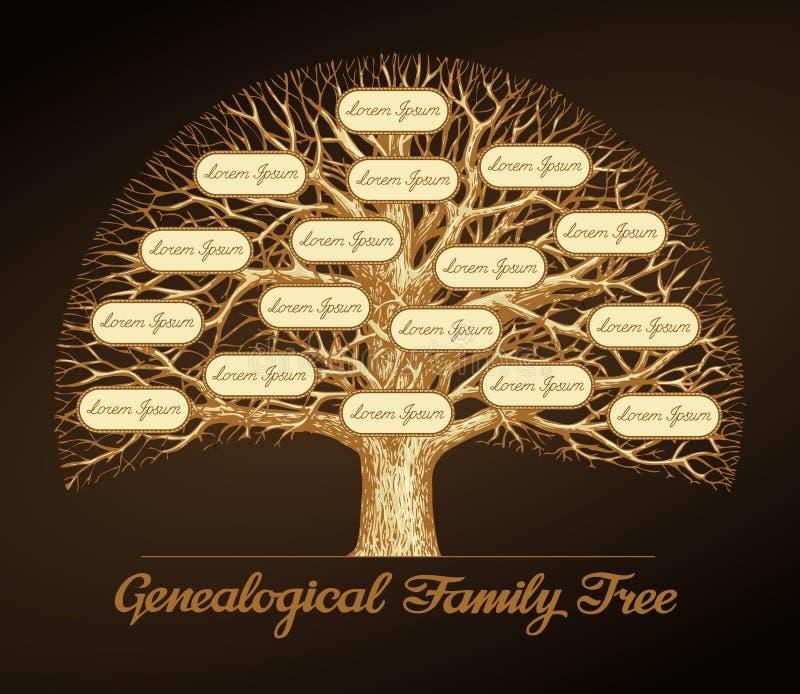 Árbol de familia genealógico dinastía Ilustración del vector ilustración del vector