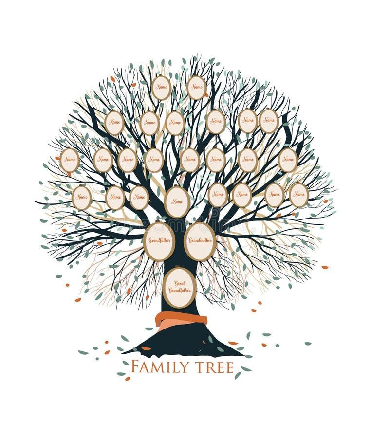 Árbol de familia o plantilla genealógica de la carta con las ramas y los marcos redondos del retrato aislados en el fondo blanco libre illustration