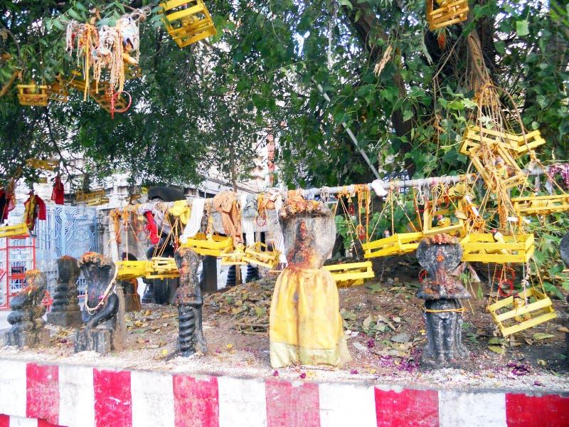 Árbol de Hindus imágenes de archivo libres de regalías