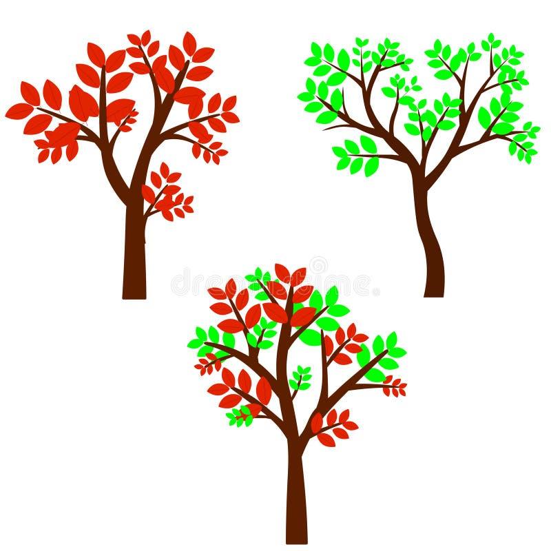 Árbol de hoja caduca en cuatro estaciones - primavera, verano, otoño, invierno Naturaleza y ecología Objeto natural para el diseñ ilustración del vector