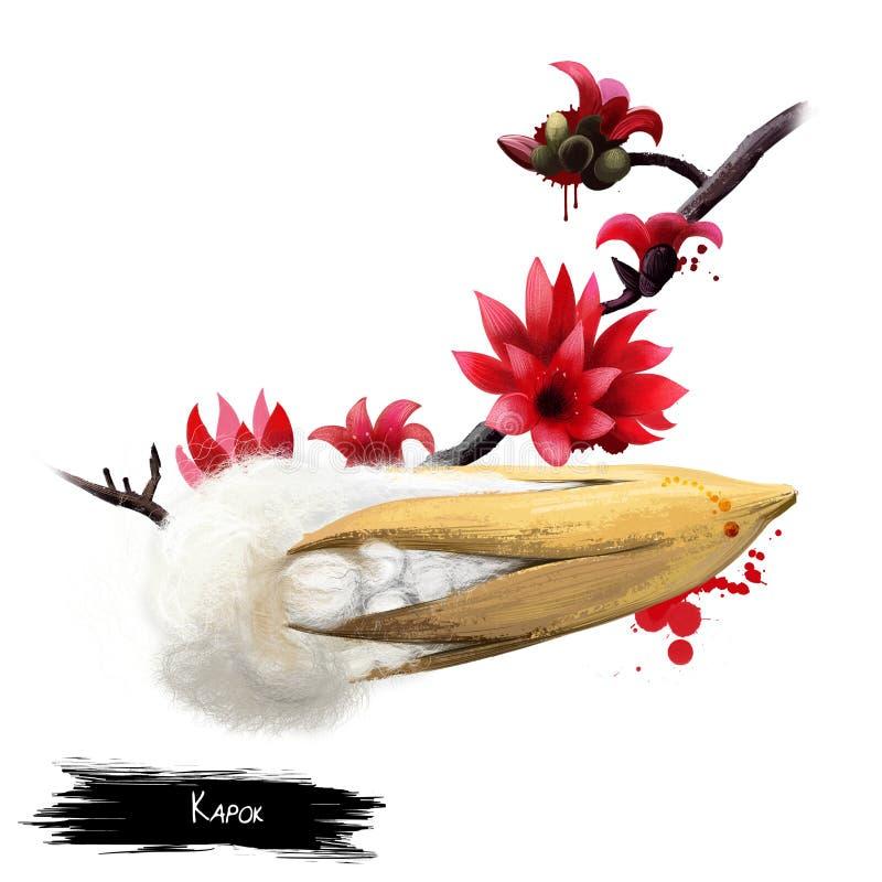 Árbol de Kapok aislado en blanco Pentandra del Ceiba stock de ilustración