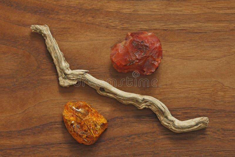 Árbol de la cornalina, ambarino y seco Colección de piedra áspera natural fotos de archivo