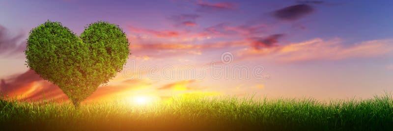 Árbol de la forma del corazón en hierba en la puesta del sol Amor, panorama ilustración del vector