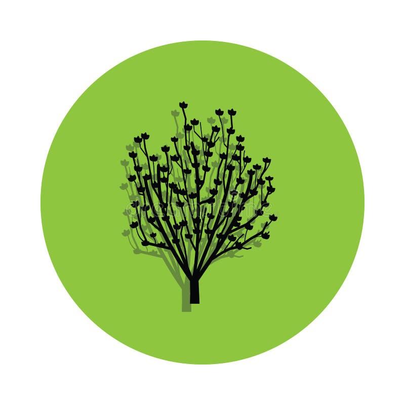 Árbol de la magnolia en icono verde de la insignia ilustración del vector