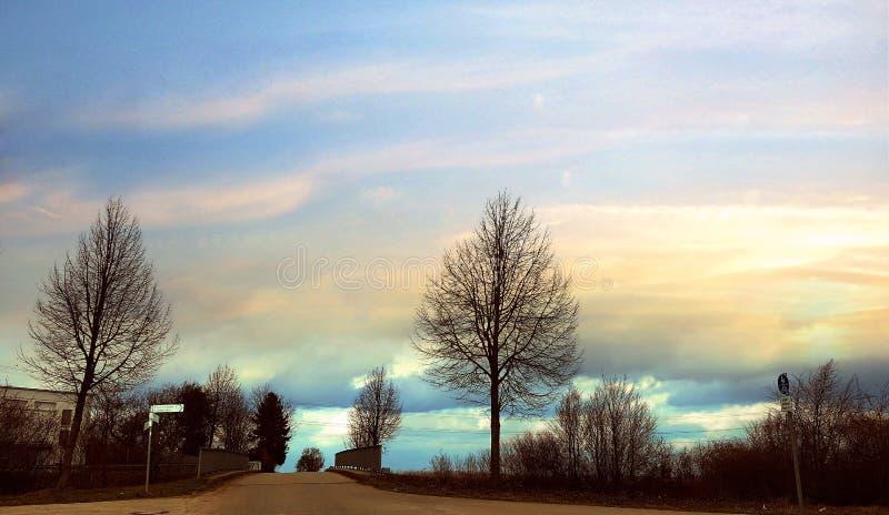 Árbol de la naturaleza de la puesta del sol del cielo azul del paisaje fotos de archivo libres de regalías