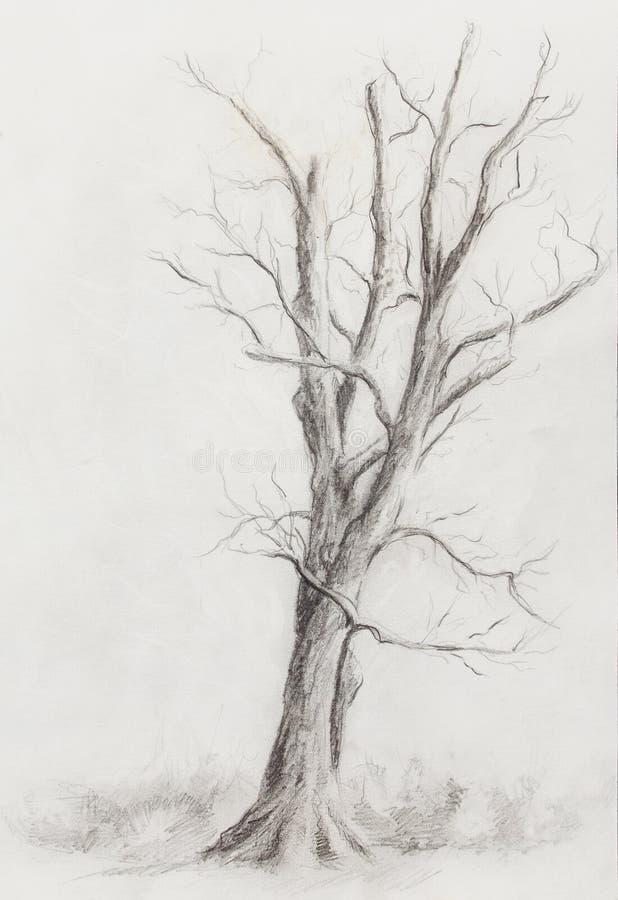 Árbol de la pintura en paisaje de la noche y fondo abstracto del grunge con los puntos, drenaje original de la mano y collage del stock de ilustración