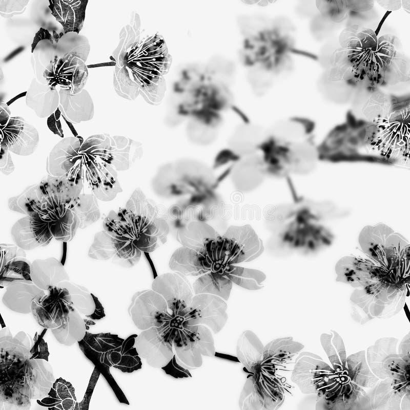 Árbol de manzana o flor de sacura fotografía de archivo