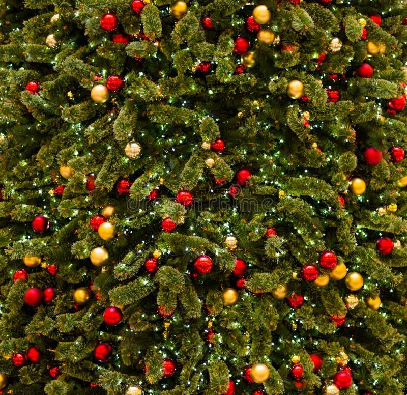 Download Árbol de navidad imagen de archivo. Imagen de escena - 64212599