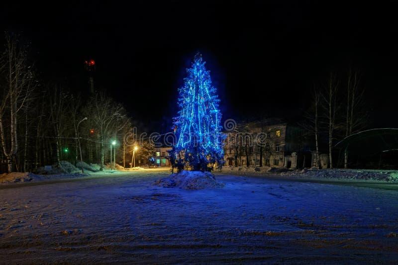 Árbol de navidad adornado en la noche fotos de archivo libres de regalías