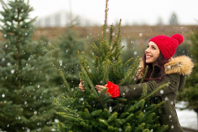 Árbol de navidad de compra de la mujer foto de archivo