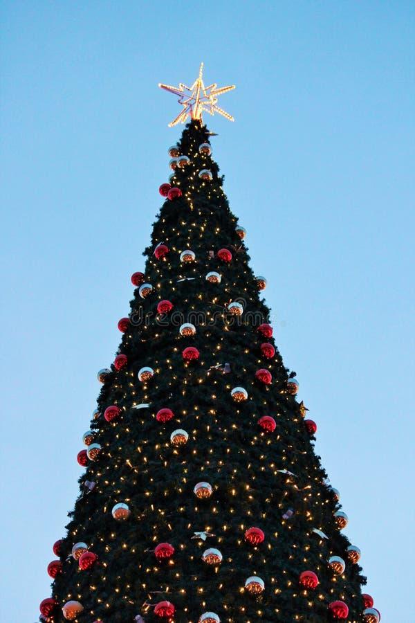 Árbol de navidad con la estrella y rojo y oro de las chucherías fotos de archivo libres de regalías