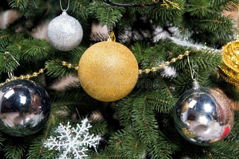 Árbol de navidad con las agujas del abeto en ramas verdes imagenes de archivo