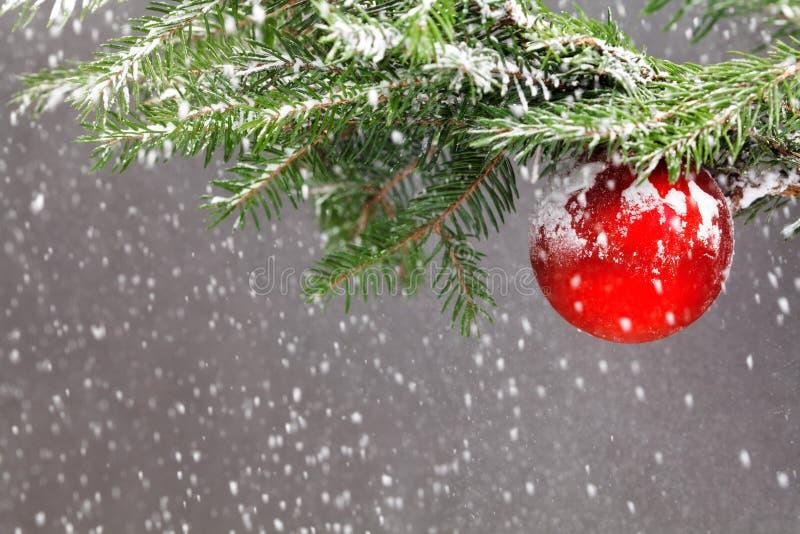 Árbol de navidad cubierto con nieve y adornado con la bola roja fotografía de archivo