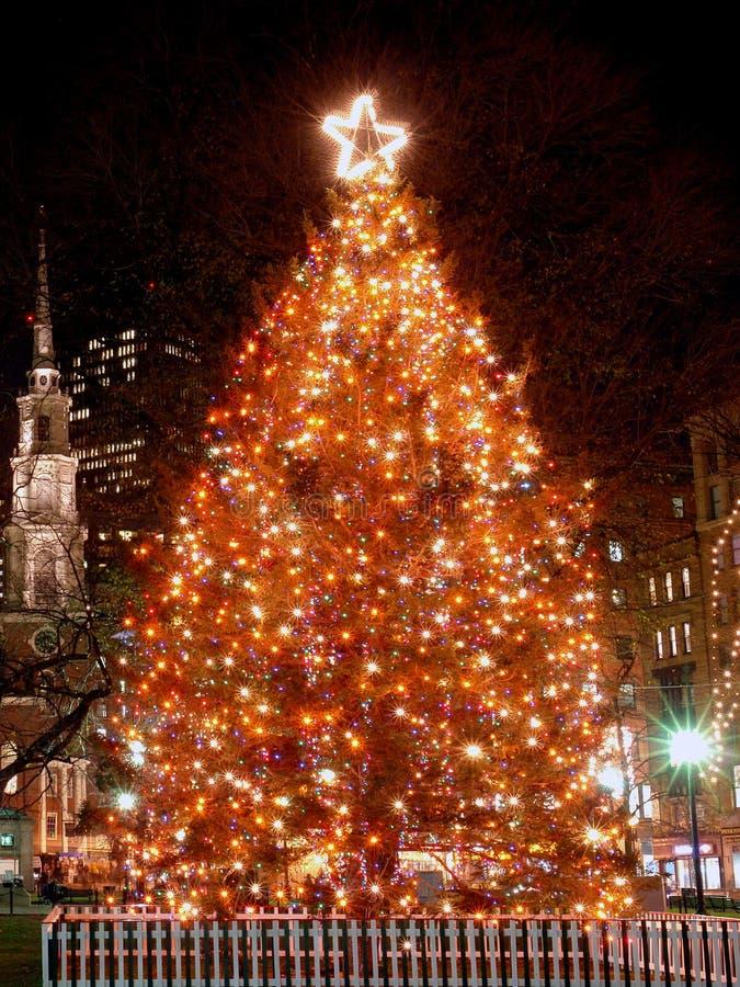Árbol de navidad de Boston fotos de archivo