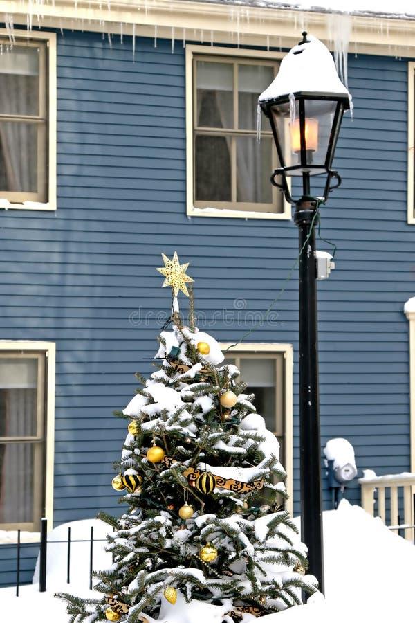 Árbol de navidad de la nieve fotos de archivo