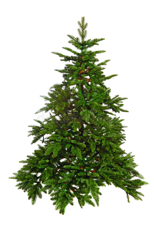 Árbol de navidad desnudo imágenes de archivo libres de regalías