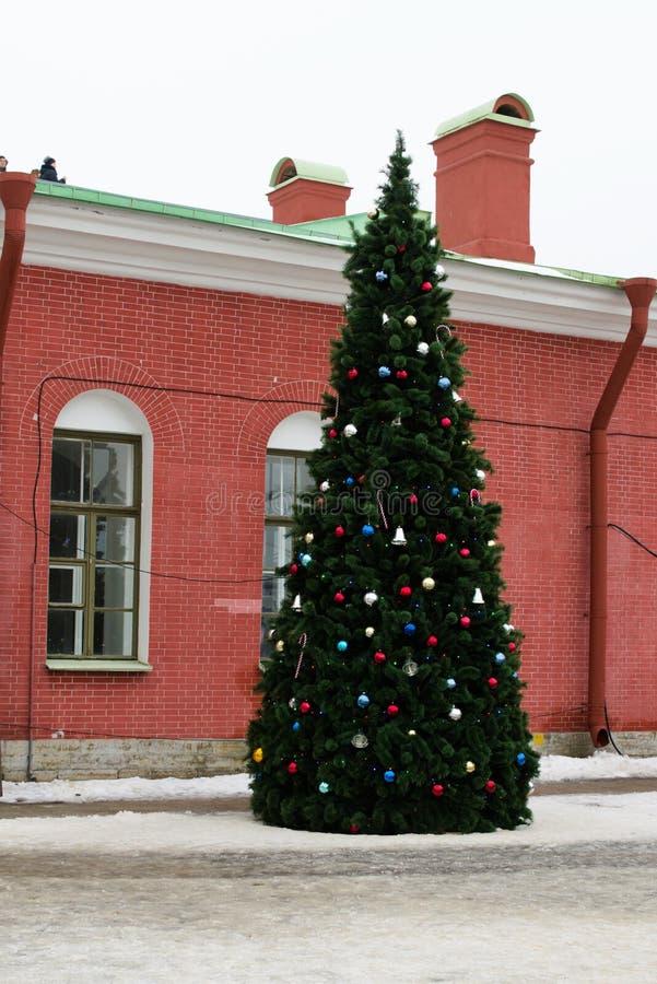 Árbol de navidad en el patio del Peter y de Paul Fortress en St Petersburg, Rusia imágenes de archivo libres de regalías