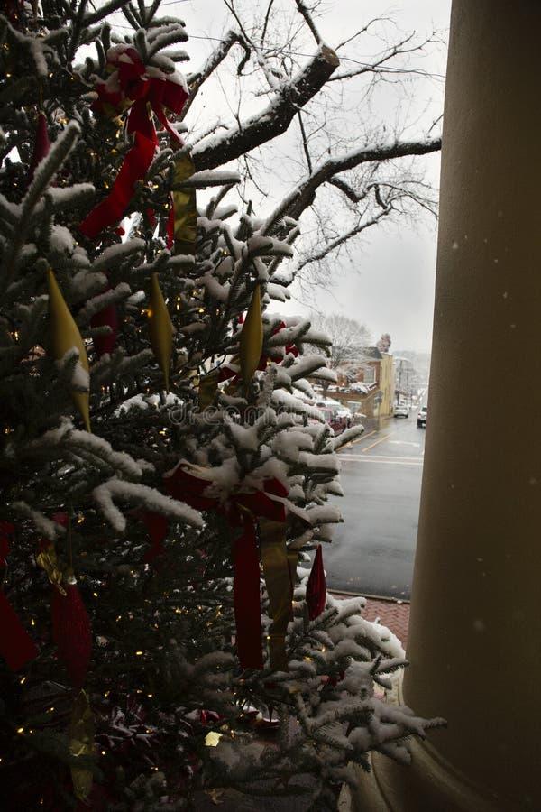 Árbol de navidad en el tribunal en Warrenton Virginia imágenes de archivo libres de regalías