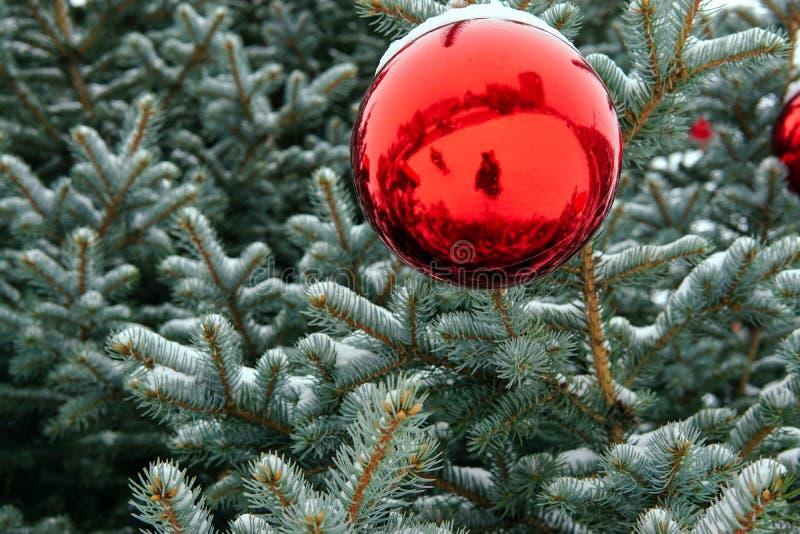 Árbol de navidad en la calle adornada con las bolas y los giftboxes rojos fotografía de archivo