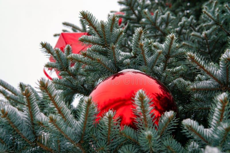 Árbol de navidad en la calle adornada con las bolas y los giftboxes rojos imagen de archivo libre de regalías