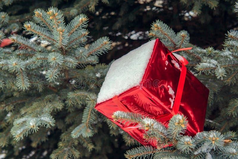 Árbol de navidad en la calle adornada con las bolas y los giftboxes rojos foto de archivo