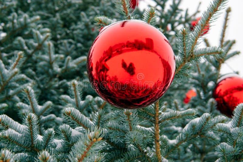Árbol de navidad en la calle adornada con las bolas y los giftboxes rojos imagen de archivo