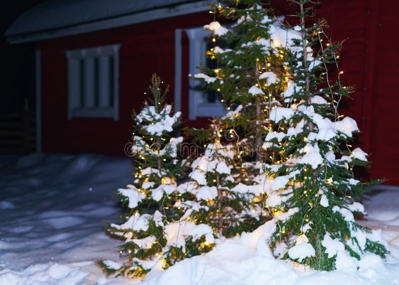 Árbol de navidad en la casa en el invierno Laponia foto de archivo