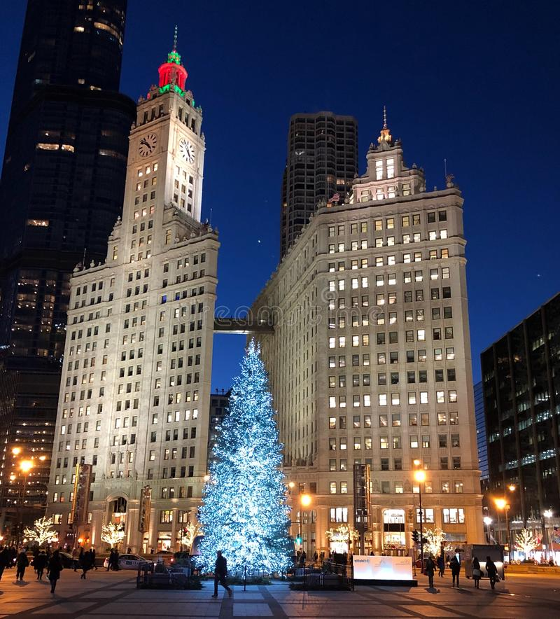 Árbol de navidad enmarcado por las torres del edificio de Wrigley fotos de archivo libres de regalías