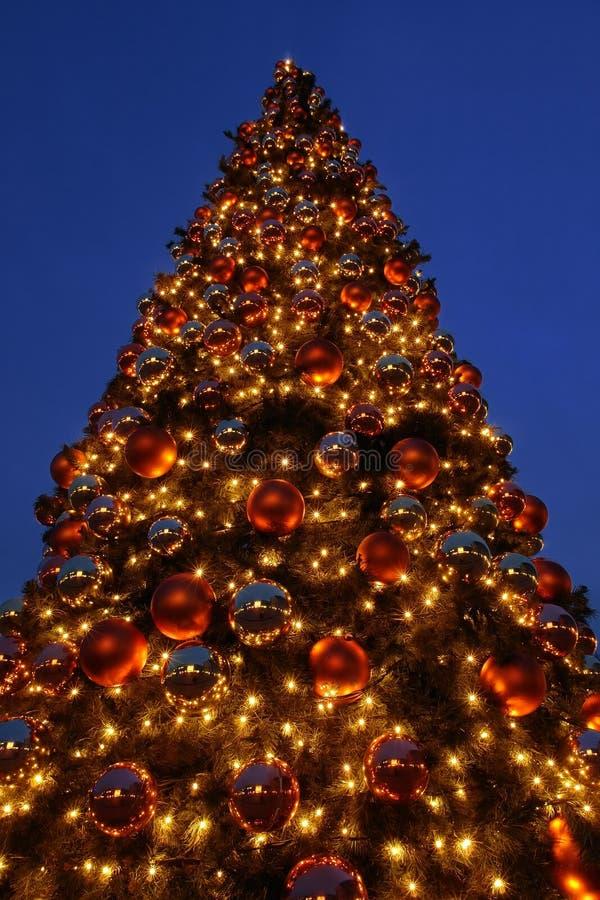 Árbol de navidad gigante imagen de archivo libre de regalías
