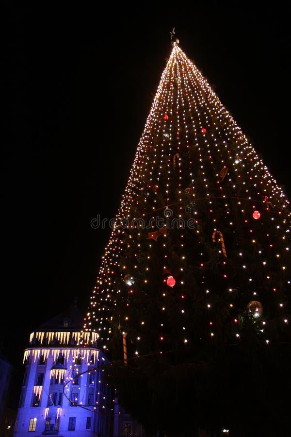 Árbol de navidad gigantesco imagenes de archivo