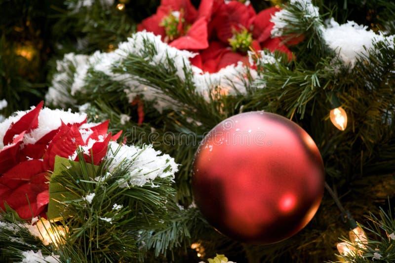 Árbol de navidad de las vacaciones de invierno con los ornamentos rojos, luces, pointsettas, nieve fotografía de archivo