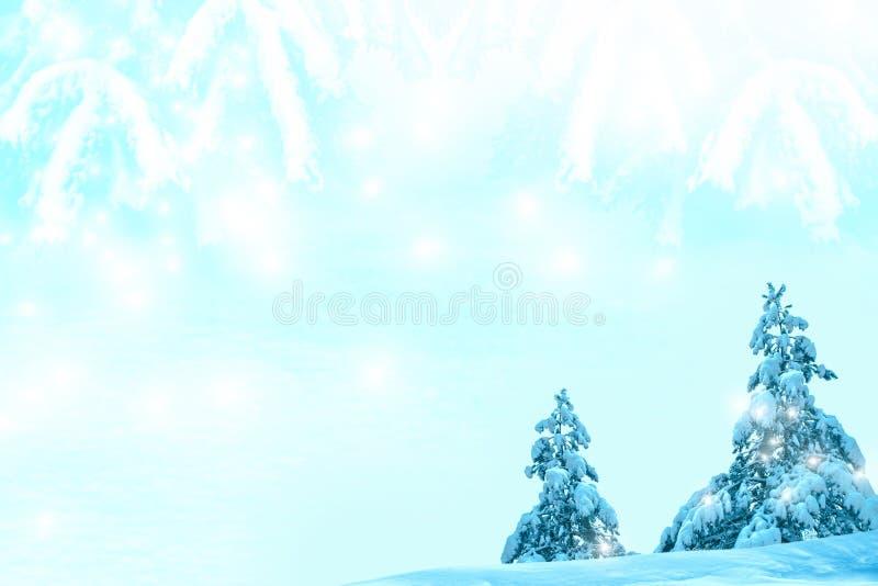 Árbol de navidad piceas imágenes de archivo libres de regalías