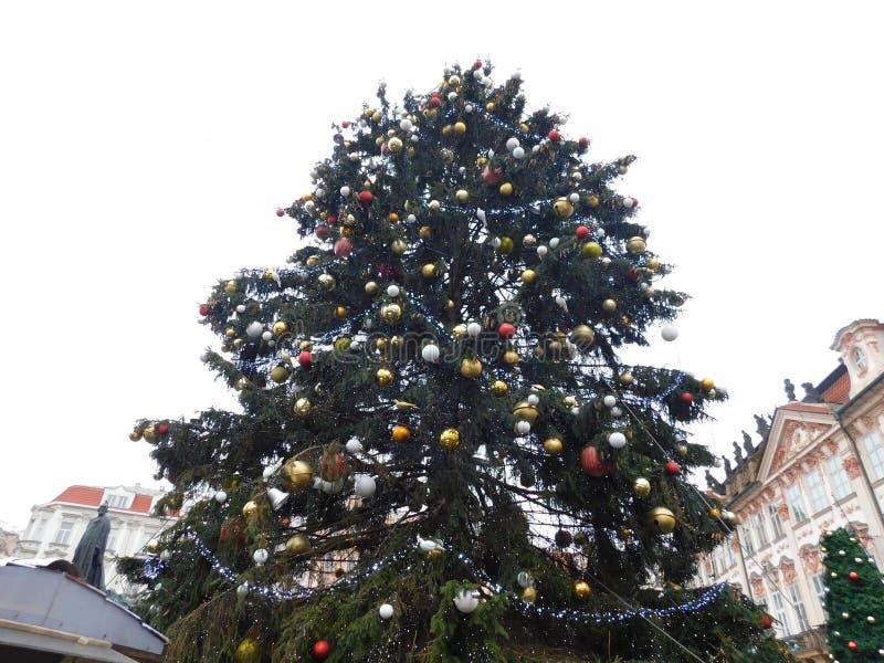 Árbol de navidad, Praga imagenes de archivo