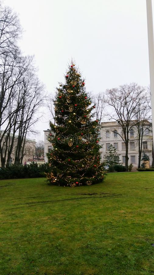 Árbol de navidad de Ryga imágenes de archivo libres de regalías