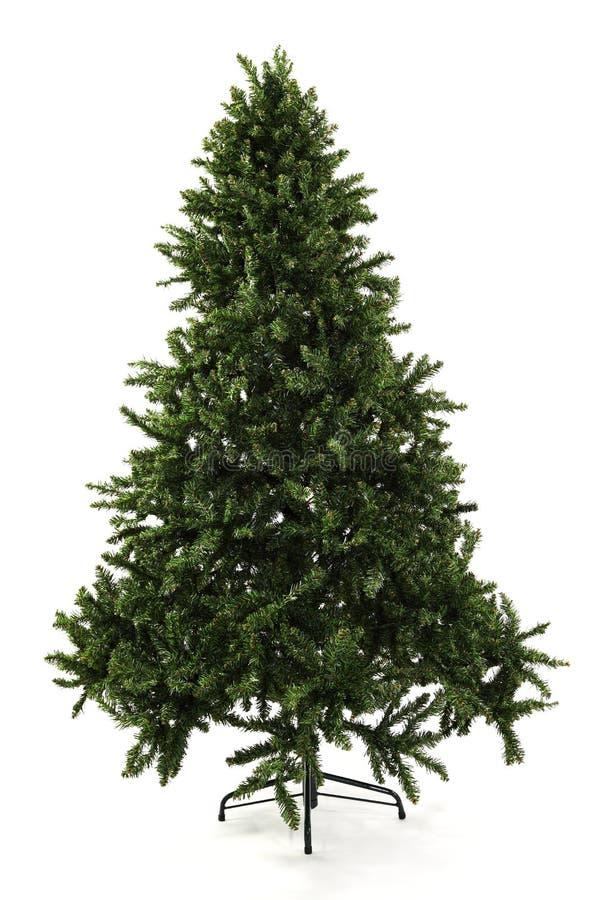 Árbol de navidad Undecorated descubierto imágenes de archivo libres de regalías