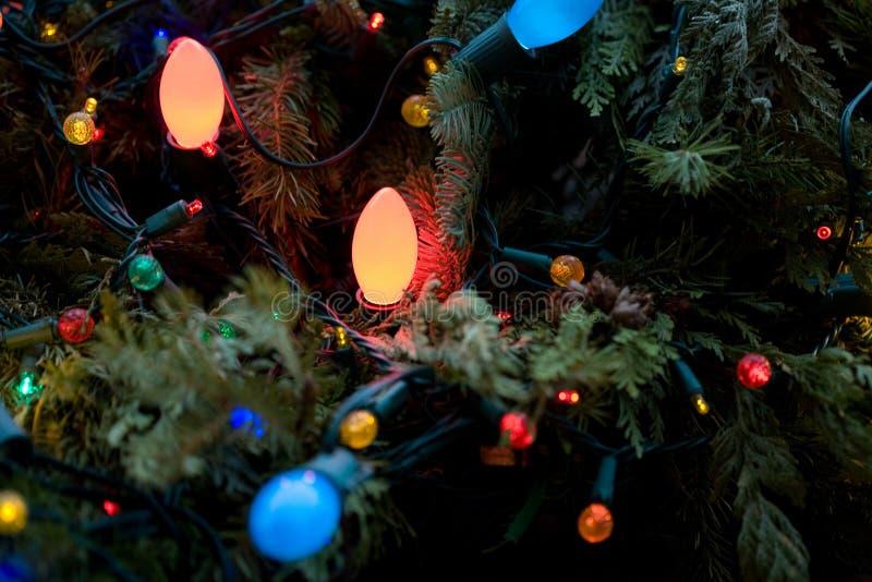 Árbol de navidad verde de las vacaciones de invierno con las luces imagen de archivo libre de regalías