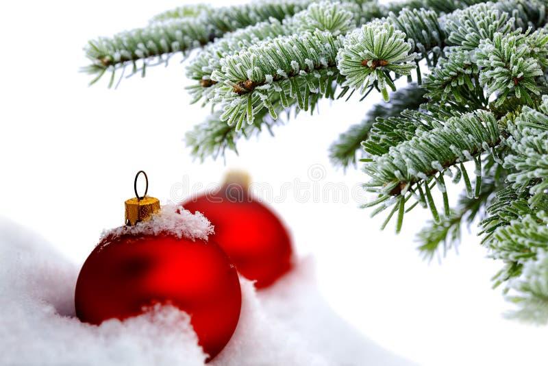 Árbol de navidad y bolas rojas imagen de archivo