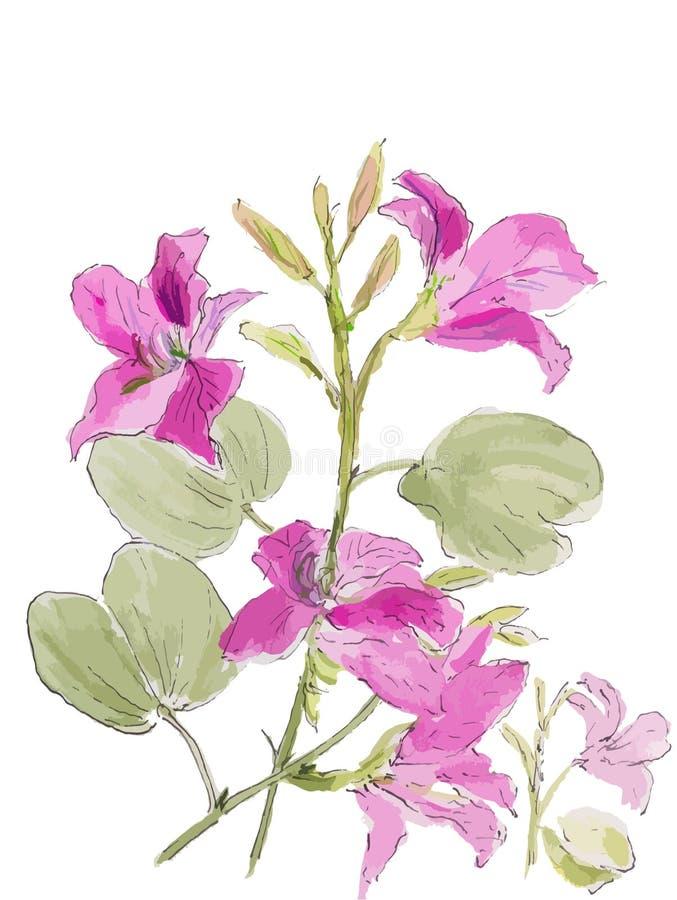 Árbol de orquídea púrpura libre illustration