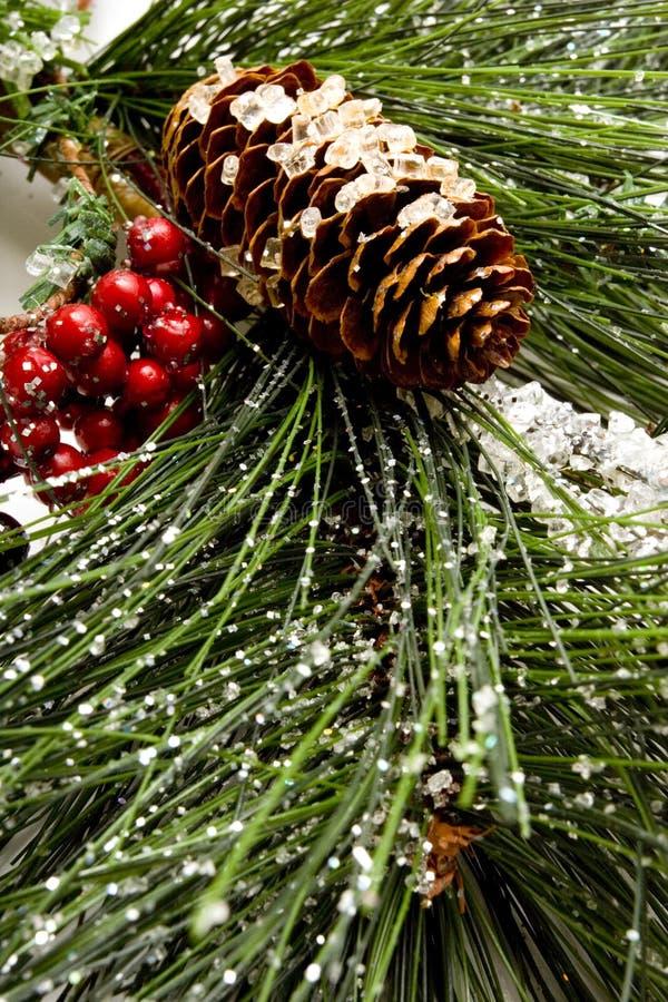 Árbol de pino de la Navidad foto de archivo libre de regalías