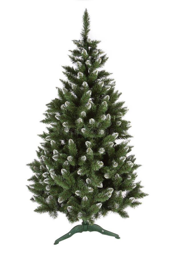 Árbol de pino de la Navidad aislado en el fondo blanco foto de archivo libre de regalías
