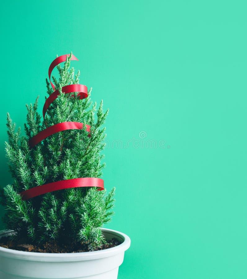 Árbol de pino lindo en fondo verde Feliz Navidad e invierno fotografía de archivo libre de regalías